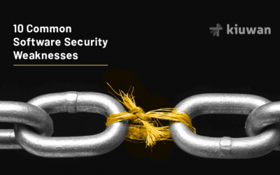 10 Common software security weaknesses