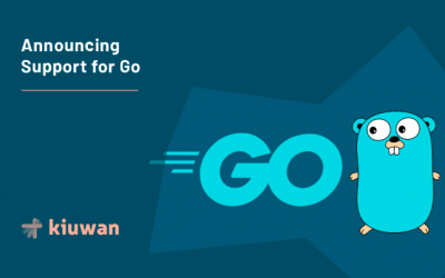 Announcing Support for Go